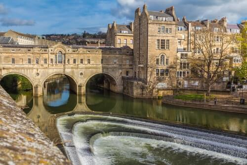 Knotweed Treatment in Bath