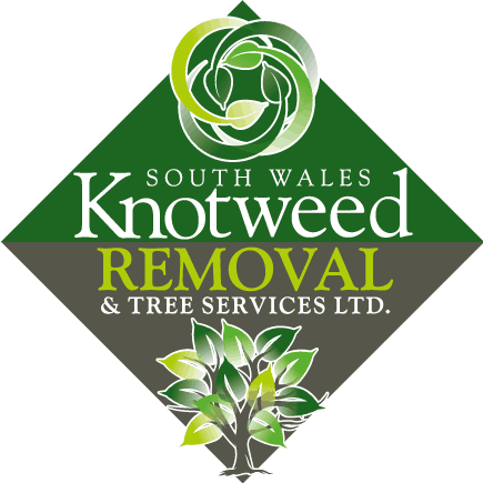 New Logo South Wales Knotweed