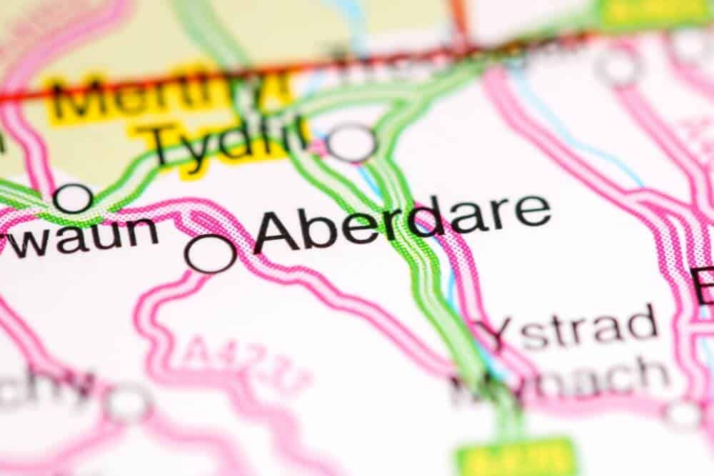 Knotweed Aberdare