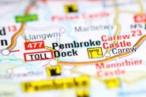 Japanese Knotweed Pembroke Dock