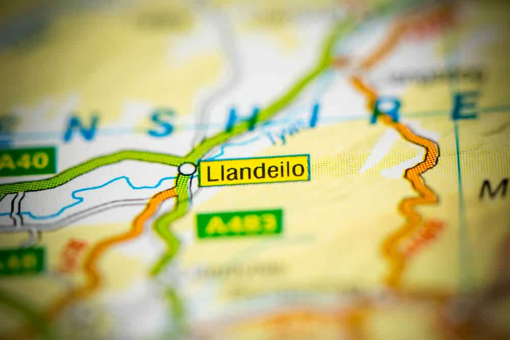 Llandeilo Tree Services