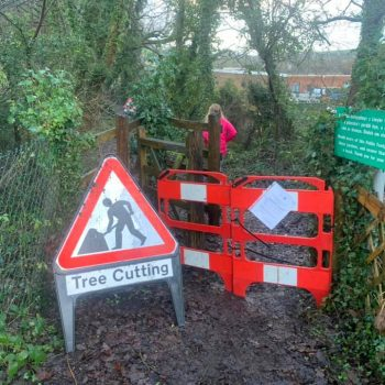 Footpath closed for tree cutting