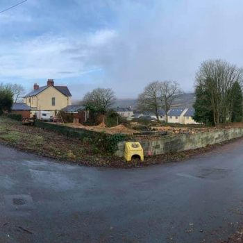 Oak and Cyprus trees removed South Wales
