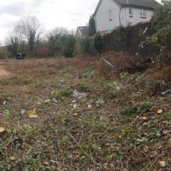 knotweed and brambles site clearance after photo