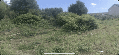 Before-Commercial Land Clearance