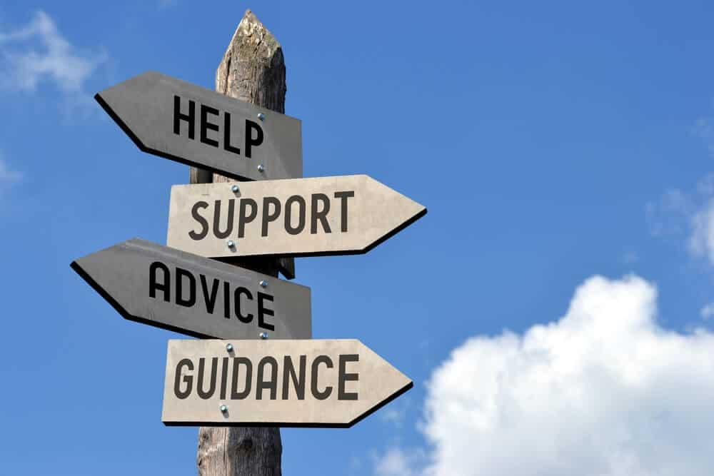 Knotweed Advice